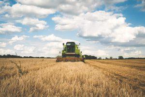 Landbruksregnskap